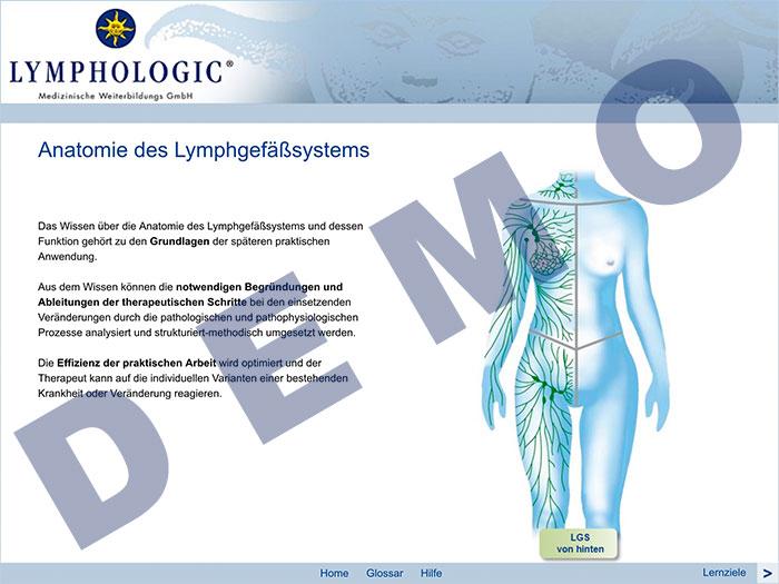 Zum Demo-Zugang E-Learning Anatomie